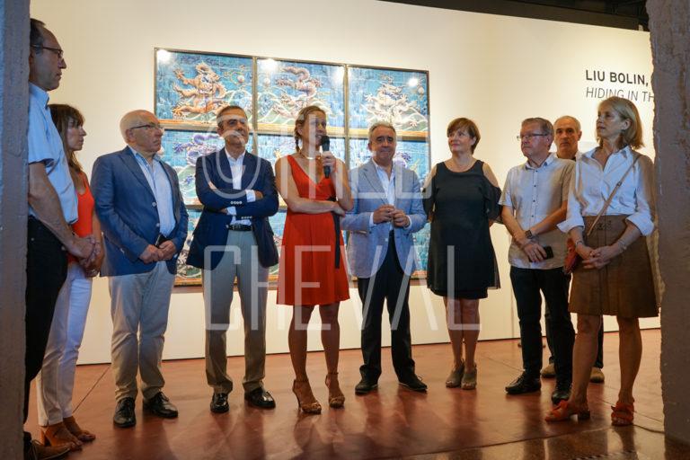 Vernissage : Expo Liu Bollin au DIDAM