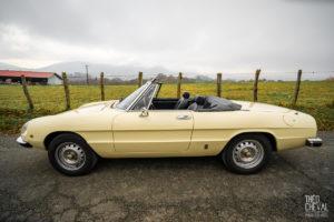 theo cheval 2019 – cforcar voitures de collection pays basque -08