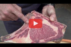 theo-cheval-video-2019-biltoki-halles-5-cantons-viande-beñat